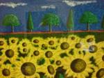 Sunflower Barrage